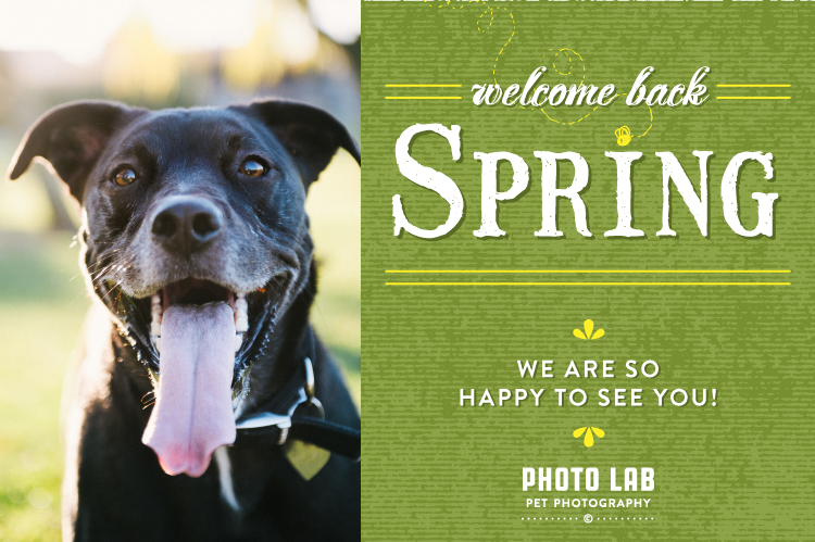 pl_welcome_spring_2014